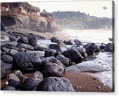 Oregon Coast Rocks Acrylic Print by Molly Williams