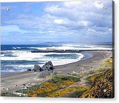 Oregon Coast Acrylic Print by Will Borden