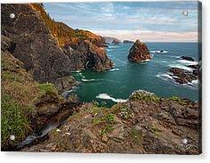 Acrylic Print featuring the photograph Oregon Coastal Scenic by Leland D Howard