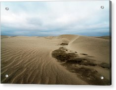 Acrylic Print featuring the photograph Oregon Dune Wasteland 1 by Ryan Manuel