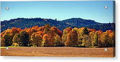 Oregon Fall Acrylic Print