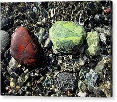 Oregon Jasper #1 Acrylic Print