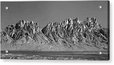 214878-organ Mountains Panorama     Acrylic Print
