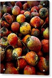 Organic Beets Acrylic Print