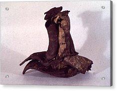Organic Ceramic 1977 Acrylic Print by Ron Hayes