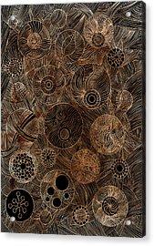 Organic Forms Acrylic Print by Frank Tschakert
