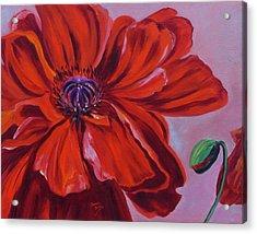 Oriental Poppy With Bud Acrylic Print