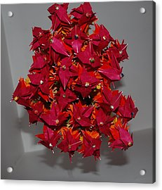 Origami Flowers Acrylic Print by Rob Hans