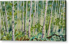 Acrylic Print featuring the painting Original Watercolor - Summer Aspen Forest by Cascade Colors