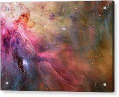 Orion Nebula M42 Acrylic Print by Mark Kiver