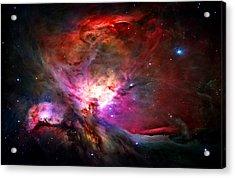 Orion Nebula Acrylic Print by Michael Tompsett