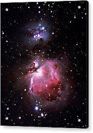 Orion Nebula Acrylic Print