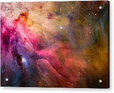Orion Nebula Acrylic Print by Space Art Pictures