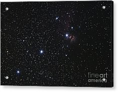 Orions Belt, Horsehead Nebula And Flame Acrylic Print by Luis Argerich