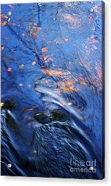 Orisha Acrylic Print by Joanne Baldaia - Printscapes