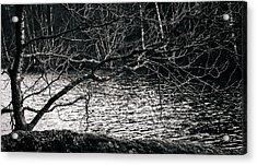 Orlok Acrylic Print by Matti Ollikainen