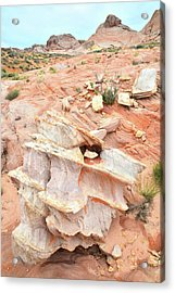 Acrylic Print featuring the photograph Ornate Rock In Wash 4 Of Valley Of Fire by Ray Mathis