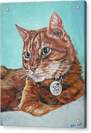 Acrylic Print featuring the painting Oscar by Bryan Bustard