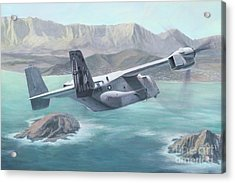 Osprey Over The Mokes Acrylic Print