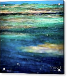 Osprey Reef Acrylic Print by Doug Sturgess