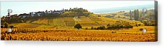 Ostheim Village And Vineyards Acrylic Print by Panoramic Images