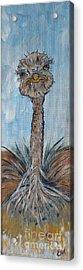Ostrich - Colorful Whimsical Art - 216 Acrylic Print by Ella Kaye Dickey