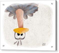Ostrich Acrylic Print by David Breeding