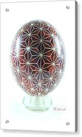 Ostrich Egg Od001 Acrylic Print