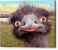 Ostrich Flightless Bird Acrylic Print by Charles Shoup
