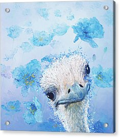 Ostrich In A Field Of Poppies Acrylic Print