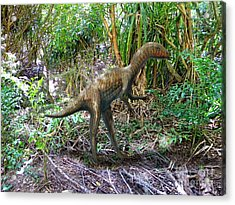 Othiniela In The Forest Acrylic Print by Frank Wilson