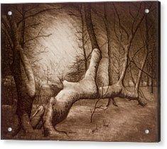 Otsiningo Park Binghamton Ny Acrylic Print by John Clum