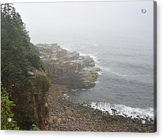 Otter Cliffs - Acadia National Park Maine Acrylic Print by Brendan Reals
