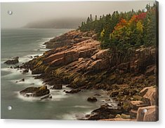 Acrylic Print featuring the photograph Otter Cliffs by Gary Lengyel