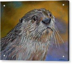 Otter Or Not Acrylic Print by Ceci Watson
