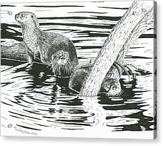 Otters Three Acrylic Print