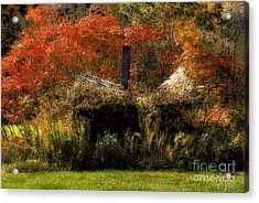 Ouch Acrylic Print by Lois Bryan