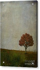 Our Meeting Place Acrylic Print