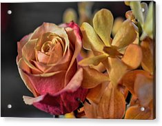 Acrylic Print featuring the photograph Our Passion by Diana Mary Sharpton