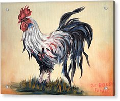Our Rooster Family Acrylic Print
