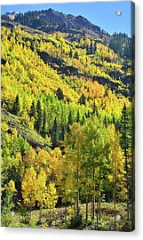 Acrylic Print featuring the photograph Ouray Canyon Switchbacks by Ray Mathis