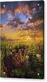 Out And About Acrylic Print by Phil Koch