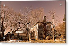 Out Back Acrylic Print by Patricia Motley