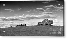 Out For Delivery In Floyd Virginia Acrylic Print by T Lowry Wilson