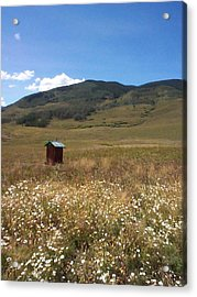 Acrylic Print featuring the photograph Out House by Mary-Lee Sanders