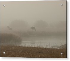 Out In The Fog Acrylic Print