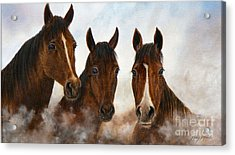 Out Of The Fog  Sold Acrylic Print