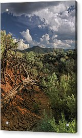 Out On The Mesa 2 Acrylic Print