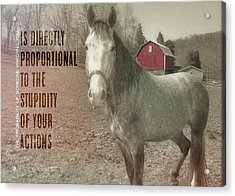 Out To Pasture Quote Acrylic Print by JAMART Photography