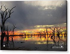 Outback Sunset Acrylic Print by Blair Stuart